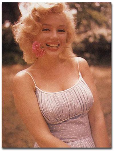 Блондинка - это не только  цвет волос. Это еще и алиби
